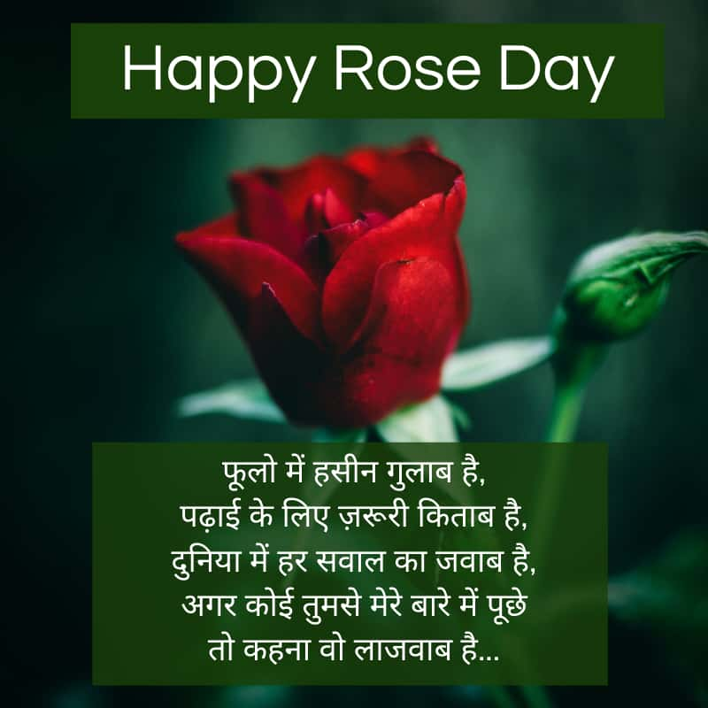 Happy Rose Day Quotes in Hindi