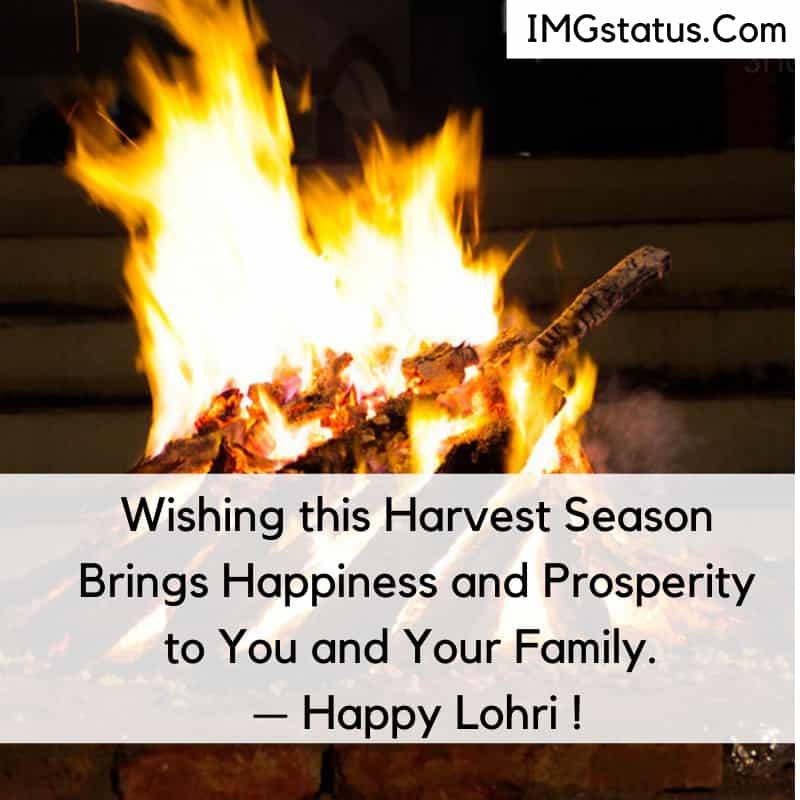 Happy Lohri Wishes in English