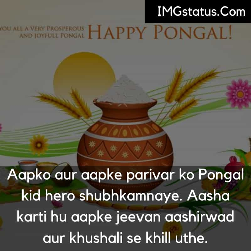 Happy Pongal Status in Hindi