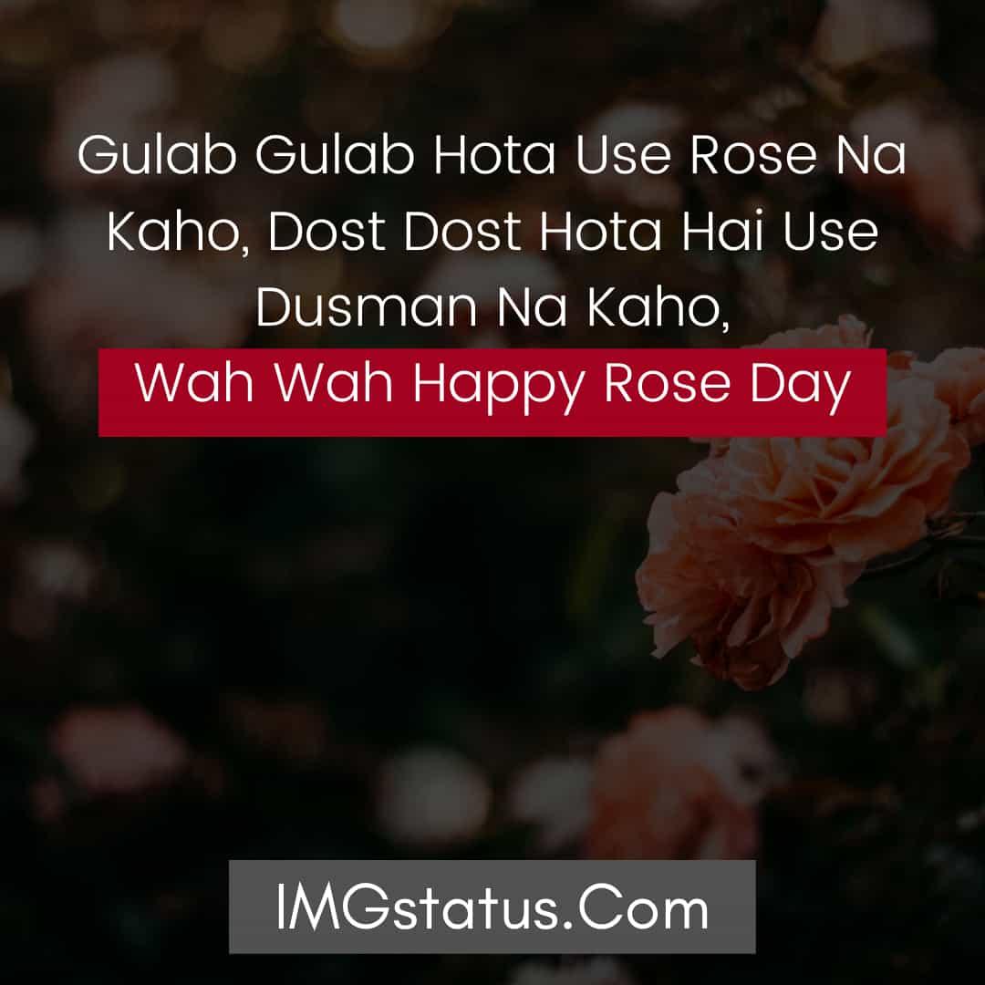 Rose Day Status Images